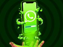 Bakal Kena Biaya, WhatsApp Tidak 100% Gratis