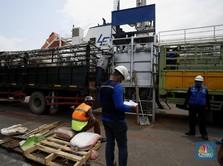 Intip Bongkar Muat Sapi Impor Australia yang Lesu Gegara PSBB