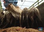 Ampas Makanan dan 9 Barang Impor yang Banjiri RI di September