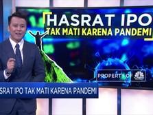 Hasrat IPO Tak Mati Karena Pandemi