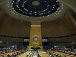 RI Naik Pitam: Negara Ini Dukung Papua Merdeka di PBB