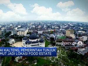 Usai Kalteng, Pemerintah Tunjuk Sumut jadi Lokasi Food Estate