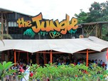 Karyawan Belum Digaji 6 Bulan, Siapa Pemilik Jungle Land?