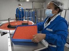 Brasil Setop Uji Vaksin Sinovac, Ini Kata Ketua Uji Vaksin RI