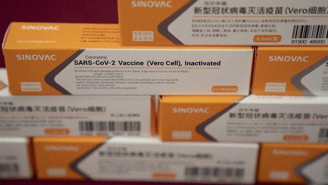 Simak Kabar Baik Uji Vaksin Covid 19 Sinovac Di Indonesia