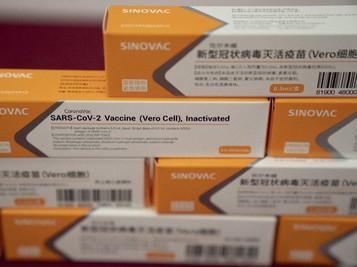 Siapkah Perusahaan Pelayaran RI Distribusikan Vaksin Covid?