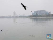 Biden Sebut DKI Terancam Tenggelam, Ini Daerah Paling Rawan!