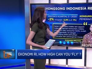 Ekonomi RI, How High Can You 'Fly'?
