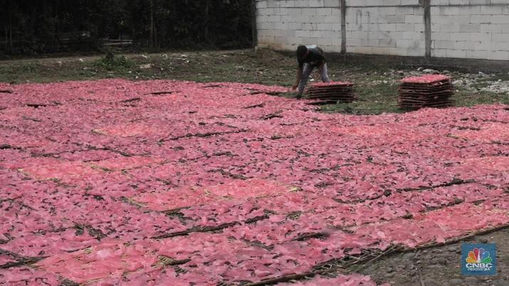 Pekerja mengangkat kerupuk merah yang dikeringkan di kawasan Karadenan Cibinong kab Bogor, Jawa Barat, Kamis, 1/10. Dalam satu minggu industri rumahan tersebut mampu memproduksi sebanyak lima kwintal kerupuk dengan harga jual Rp15 ribu per kilo.  Kerupuk merah ini dijual hingga ke berbagai wilayah di Jabodetabek. Pengusaha mengaku produksi kerupuk menurun hingga 30 persen akibat daya beli masyarakat turun pada pandemi COVID-19. Badan Pusat Statistik (BPS) mengumumkan telah terjadi deflasi selama tiga bulan berturut-turut, yaitu sebesar 0,10% pada Juli, 0,05% pada Agustus, dan 0,05% di September 2020. Kepala BPS Suhariyanto mengatakan, terjadinya deflasi selama dua bulan berturut-turut menandakan daya beli masyarakat atau tingkat konsumsi rumah tangga melemah dan butuh waktu untuk kembali ke titik normal.