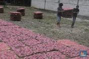 Industri Rumahan Kerupuk Merah Bertahan Saat Pandemi Covid-19