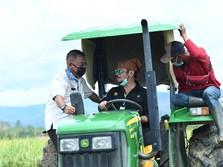 Sidak ke Lolong Guba, Mentan Kebut Food Estate di Pulau Buru