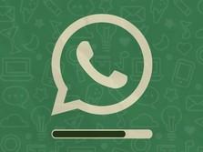 WhatsApp Ada Sederet Fitur Baru: Mode Liburan Sampai Mute!