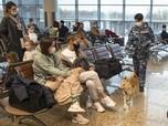 Gaya Putin Lawan Covid, Sebar Anjing Pendeteksi Corona