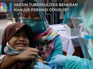 Vaksin Tuberkulosis Beneran Manjur Perangi Covid-19?