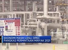 Ekonomi Lesu, OPEC Pangkas Proyeksi Permintaan Minyak 2021