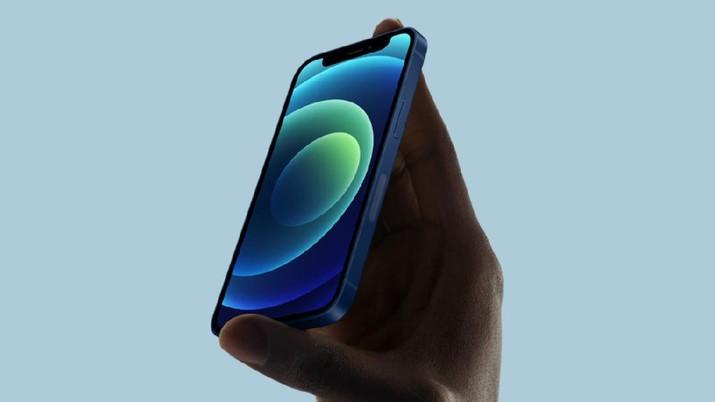 iPhone 12 mini (Dok. Apple via theverge)