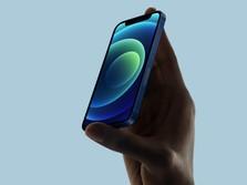 Yah, Apple Gak Akan Rilis iPhone Mini di 2022
