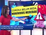 Corona Belum Reda, Norovirus Merebak