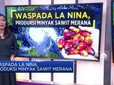 Waspada La Nina, Produksi Minyak Sawit Merana