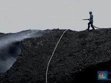 Batu Bara untuk Gasifikasi Ditargetkan 13 Juta Ton di 2024