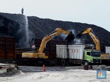 Penampakan Bongkar Muat Batu Bara di Tanjung Priok