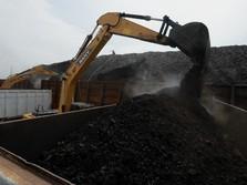 Baru juga Tembus US$ 85/ton, Batu Bara Akhirnya Balik Arah