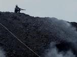 Harga Meroket, Tapi Produksi Batu Bara RI di Q1 Drop 4%