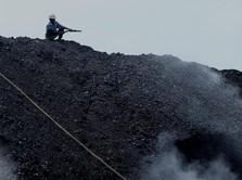 Top! Harga Batu Bara On Fire, Tembus US$ 61/ton
