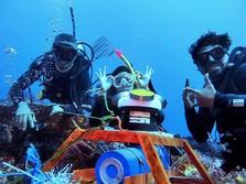 ESDM Lirik NTT untuk Pembangkit Listrik Tenaga Arus Laut