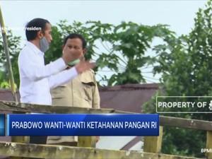 Prabowo Wanti-Wanti Ketahanan Pangan RI