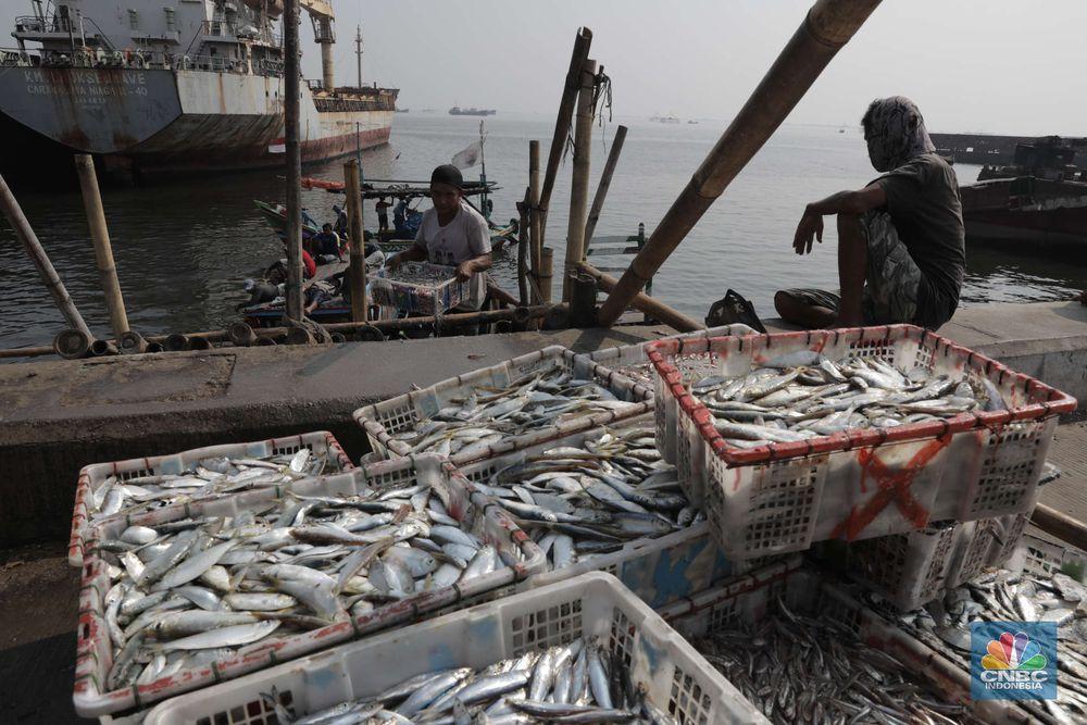 Pekerja mengangkat ikan asin di kawasan Cilincing, Jakarta Utara, Jumat (23/10). Memasuki musim penghujan dan isu Badai La Nina menjadi momok yang cukup mengkhawatirkan bagi nelayan. Menurut salah satu nelayan Ros mengatakan nelayan kerap mengalami masalah saat menjaring ikan di musim hujan.