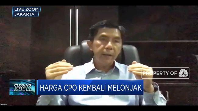 SSMS La Nina, Industri Sawit Siapkan Antisipasi Jaga Produksi CPO