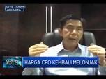 La Nina, Industri Sawit Siapkan Antisipasi Jaga Produksi CPO