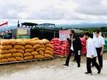 Proyek Lumbung Pangan Jokowi Ada Progres, Ini Perkembangannya