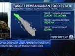 Proyek Food Estate, Kementerian ATR Identifikasi 78 Ribu Ha