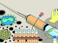 Mutasi Corona di Hewan Bahayakan Pengembangan Vaksin Covid?