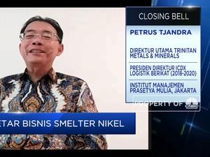 Smelter Dibangun, PURE Siap Produksi Nikel 5 Ribu Ton/tahun