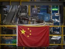 Sarang Burung & 9 Barang Andalan Ekspor RI ke China