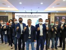 BRI Micro & SME Index Bisa Jadi Acuan Pengembangan UMKM di RI