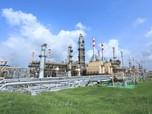 Pertamina Targetkan Produksi Green Diesel Hingga 100 Ribu BPH