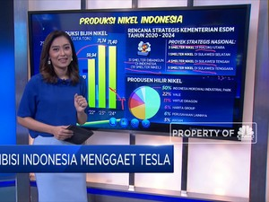 Ambisi Indonesia Menggaet Tesla