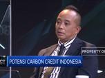 Begini Potensi Carbon Credit Indonesia