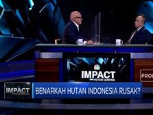 Ini Kata Pelaku Usaha Soal Potensi Hutan Indonesia