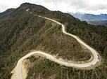 Meliuk-Liuk, Penampakan Jalan Membelah Hutan di Zaman Jokowi