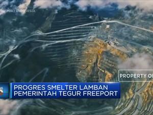 Progres Smelter Lamban Pemerintah Tegur Freeport