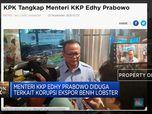 KPK Tangkap Menteri Edhy Prabowo Terkait Ekspor Benih Lobster