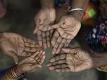 Heboh Pelecehan & Pemerkosaan di Kebun Sawit, Ada Sinar Mas?