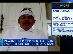 DPR: Kebijakan Menteri Edhy Tak Cerminkan Keberpihakan Negara