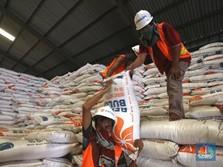 RI Mau Impor Beras, Bos Bulog: Belum Tentu Kami Laksanakan!