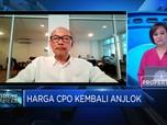 Ini Dampak Tak Diperpanjangnya Pembebasan Pajak CPO Malaysia